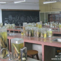 Laboratory under Fisheries Biology and Genetics Department, FF, BAU