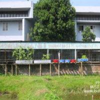 Backyard research shed of BAU FF