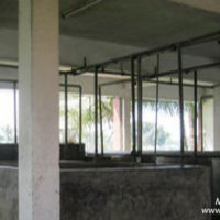Hatchery (inside) of BAU FF