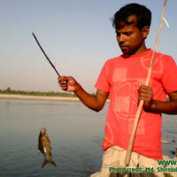 Fisherman showing a captured kalbaus