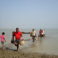 বিল কুমারী: মাছ ধরে ফেরার পথে