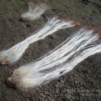 বিল কুমারী: মাছ ধরার জাল