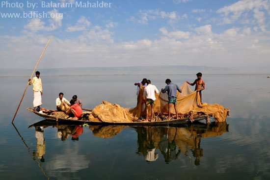 Beauty of Haor at Sunamganj: as a Fisheries Hotspot