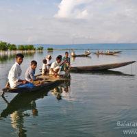 Angling in Matian haor, Sunamganj
