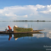 Boat in Matian haor, Sunamganj