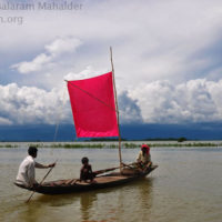 Fisher boat in the haor, Sunamganj