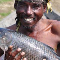 Fisherman with Rui (Labeo rohita)