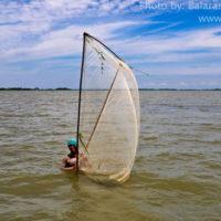 Fishing by push net in Boiram haor