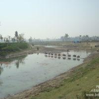 মরা বঙ্গালী (মতান্তরে মহিষাবান) নদীর তীরেই প্রতি বছর বসে পোড়াদহ মাছের মেলা
