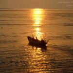 Beauty of The River Padma (Rajshahi-Pakshi)